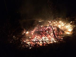 Campfire!!