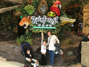Rainforest Cafe anyone? Yes, please!